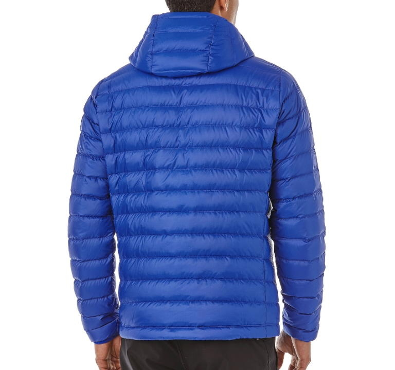 Kurtka Patagonia Down Sweater Hoody - viking blue - tył